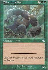 Silverback Ape
