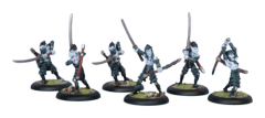 Blighted Swordsmen Unit