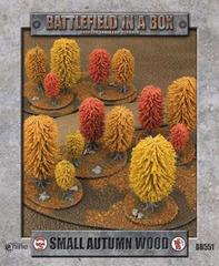 Small Autumn Wood - BB551