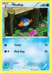 Mudkip - 33/160 - Common
