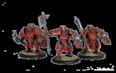 Man O War Shocktroopers Unit