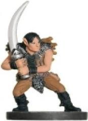 Wild Elf Raider