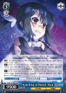 Something to Protect, Miyu - PI/EN-S04-E029 - RR