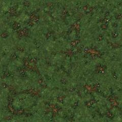 Runewars Miniatures Game: Playmat - Grassy Field
