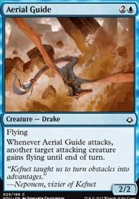 Aerial Guide - Foil