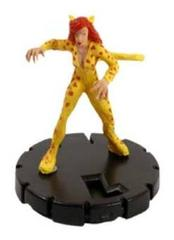 Cheetah (017)