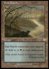 Salt Marsh - Foil