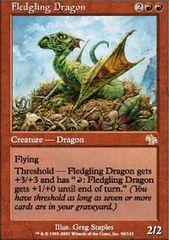 Fledgling Dragon - Foil