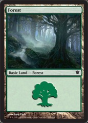 Forest (263) - Foil on Ideal808