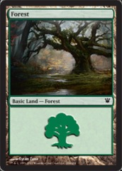 Forest (264) - Foil on Ideal808