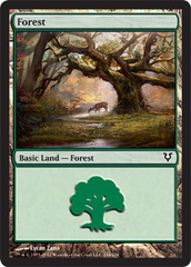 Forest (244) - Foil on Ideal808
