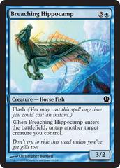 Breaching Hippocamp