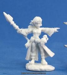 77031 - Cassie, Gnome Wizard