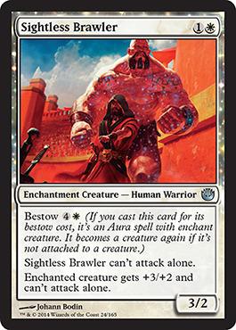 Sightless Brawler