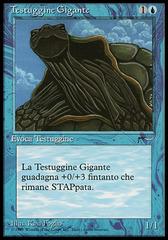 Giant Tortoise (Testuggine Gigante)