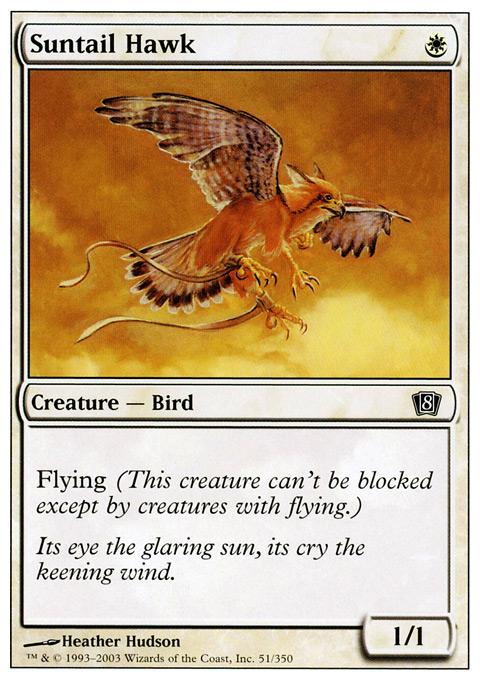 Suntail Hawk