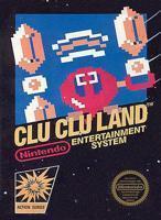 Clu Clu Land (Nintendo) - NES