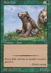 Bear Cub on Channel Fireball