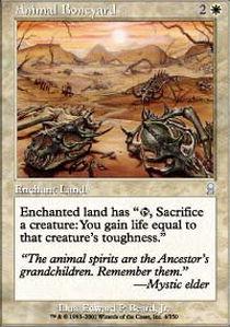 Animal Boneyard