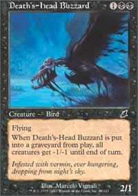 Deaths-Head Buzzard