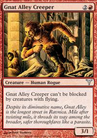 Gnat Alley Creeper
