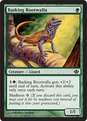 Basking Rootwalla on Channel Fireball