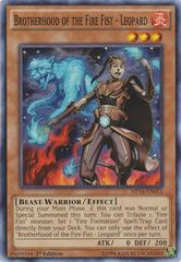 Brotherhood of the Fire Fist - Leopard - MP14-EN013 - Common - 1st Edition on Channel Fireball