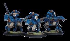 Storm Lance Cavalry Unit