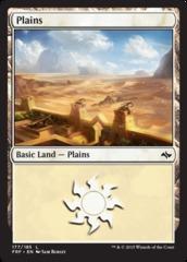 Plains (177/185)