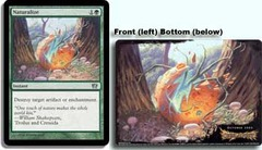 Oversized 8th Edition Box Topper - Naturalize