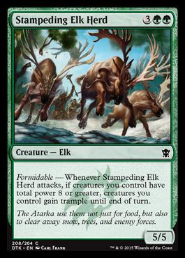 Stampeding Elk Herd