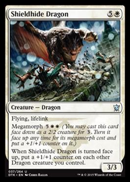 Shieldhide Dragon - Foil