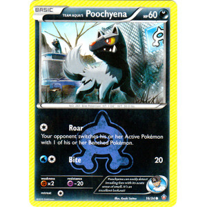 Team Aqua's Poochyena - 16/34 - Common