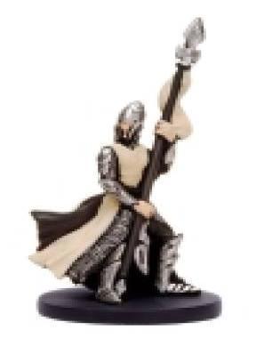 Elf Spearguard