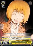 Hope in the Darkness of Despair Armin - AOT/S35-TE06 - TD