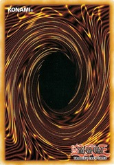2012 Premium Tin - 1lb Bulk Cards