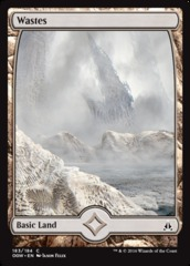 Wastes (183) - Full Art - Foil