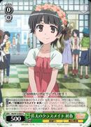 Uiharu Saten's Classmate - RG/W13-028 - R