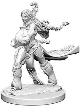 Pathfinder Deep Cuts Unpainted Miniatures: W1 Human Female Sorcerer