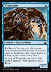 Wingcrafter - Foil