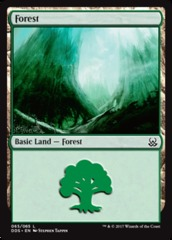 Forest (65) on Channel Fireball