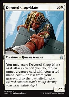 Devoted Crop-Mate - Foil