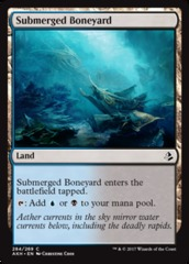 Submerged Boneyard