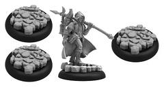 (76005) Grymkin The Wanderer Warlock Blister