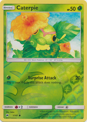 Caterpie - 1/147 - Common - Reverse Holo
