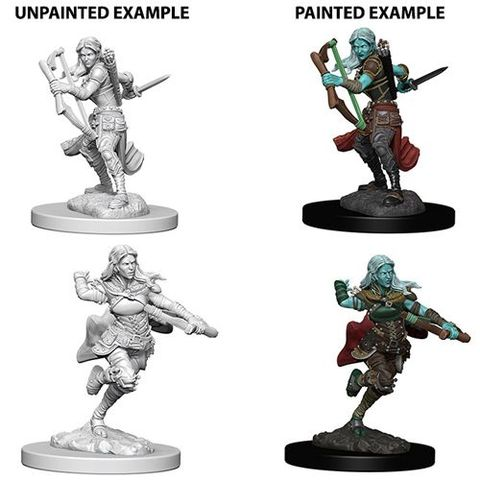 Nolzurs Marvelous Unpainted Miniatures - Air Genasi Female Rogue