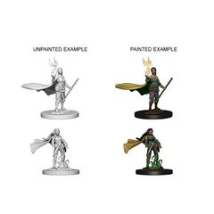 D&D Unpainted Minis - Elf Female Druid