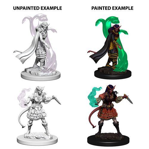 Nolzurs Marvelous Unpainted Miniatures Tiefling Female Sorcerer