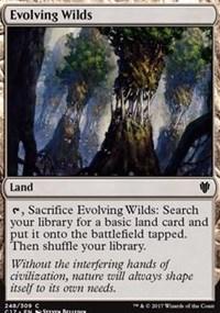 Evolving Wilds