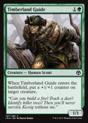 Timberland Guide - Foil